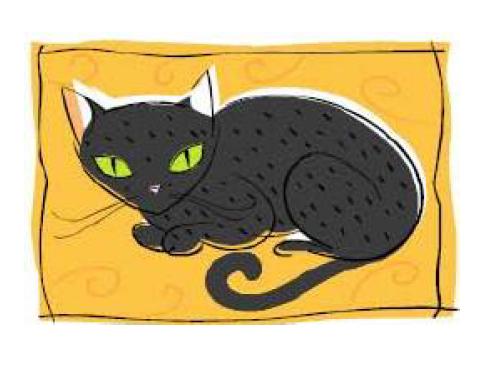Teoria de la gata